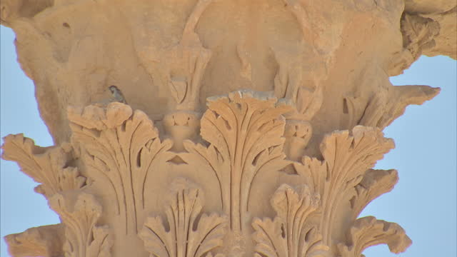 exterior shots of the unesco world heritage site in palmyra including shots showing the detailed carvings on the corinthian columns and views of the... - korinthisch stock-videos und b-roll-filmmaterial