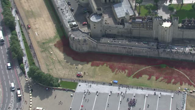 exterior shots of thousands of ceramic poppies laid out in the grounds of the tower of london tourists / groups of people gather around the named art... - 100th anniversary stock videos & royalty-free footage