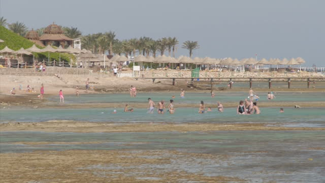 exterior shots of tourists relaxing on a beach in sharm el sheikh on november 08 2014 in sharm ash shaykh egypt - sinai egitto video stock e b–roll