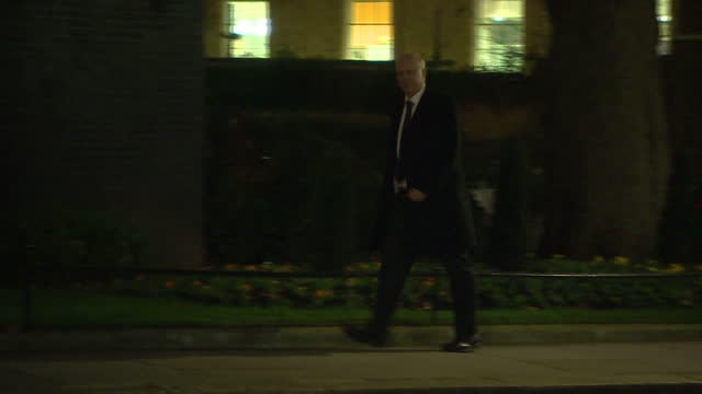 Exterior shots of Transport Secretary Chris Grayling arriving at Number 10 Downing Street during a day of Cabinet reshuffle meetings on January 08...