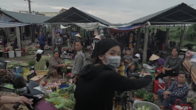 exterior shots of vietnamese countryside and village on 27 october 2019 in ha tinh, vietnam - village stock videos & royalty-free footage