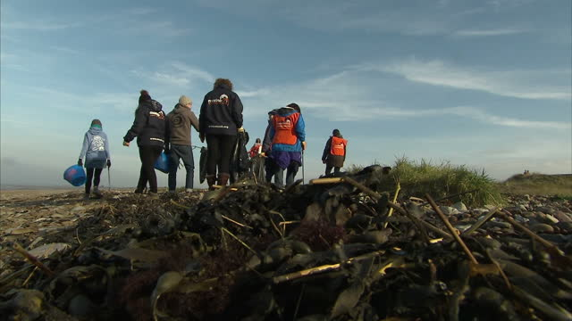 exterior shots of volunteers from the marine conservation society picking up rubbish from an overcast beach at weston super mare on january 24 2017... - weston super mare stock videos and b-roll footage