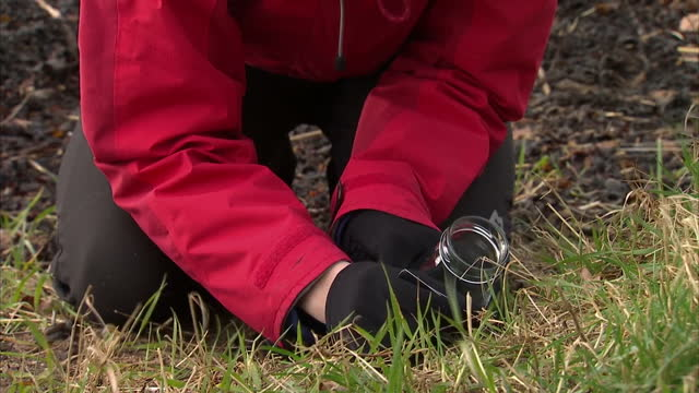 exterior shots of volunteers searching a beach and collecting small plastic pellets known as 'nurdles' that can be harmful to wildlife and the wider... - dunfermline stock videos & royalty-free footage