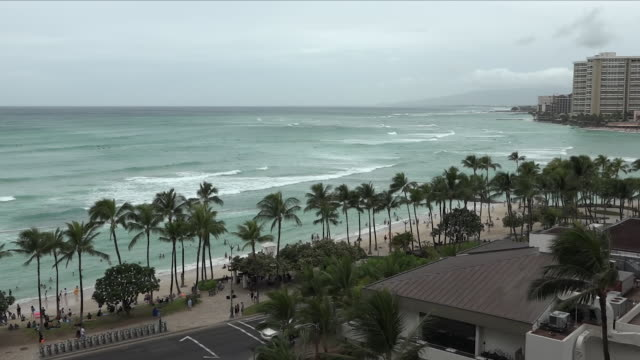 exterior shots of waves washing into a beach and palm trees blowing in a strong wind before hurricane lane was due to hit hawaii on 23 august 2018 in... - pacific islands stock videos & royalty-free footage