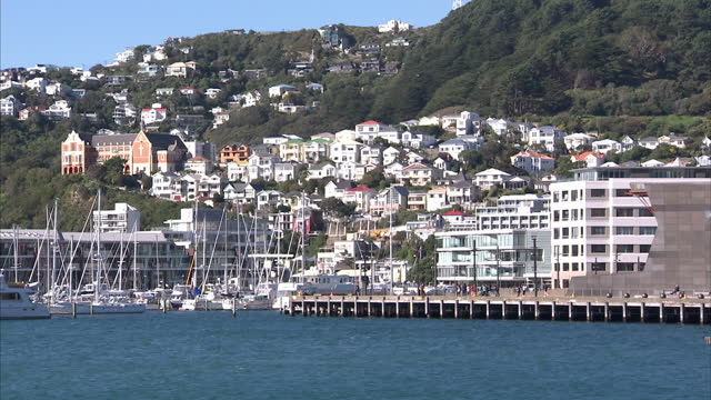 exterior shots of wellington harbour with various yachts moored and harbourside properties on may 09 2015 in wellington new zealand - wellington new zealand stock videos and b-roll footage
