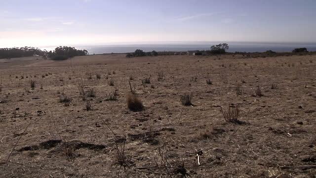 exterior shots of widespread dry, barren, arid land with minimal plantation. dry californian drought land at uc santa barbara on january 17, 2014 in... - santa barbara california stock videos & royalty-free footage