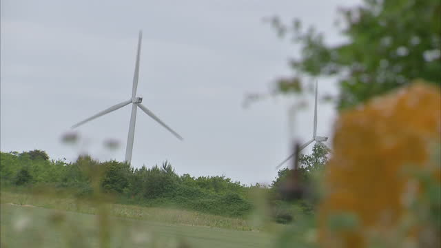 exterior shots of wind turbines on a small windfarm near barwick, with hedgerow greenery in the foregound.>> on june 18, 2015 in barwick, united... - piccolo video stock e b–roll