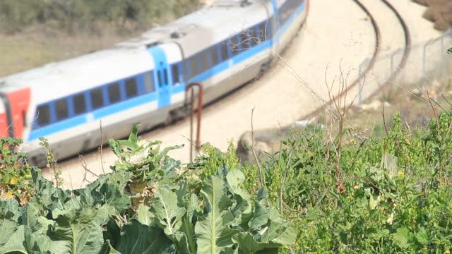 exterior shots of young israeli children lemon trees and high shot of train driving past on sandy tracks in battir near bethlehem israel on in... - west bank stock videos & royalty-free footage