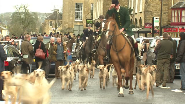 stockvideo's en b-roll-footage met exterior shots people huntsmen women ride on horseback through chipping norton following a large pack of hounds huntsmen women on horseback in... - recreatief paardrijden