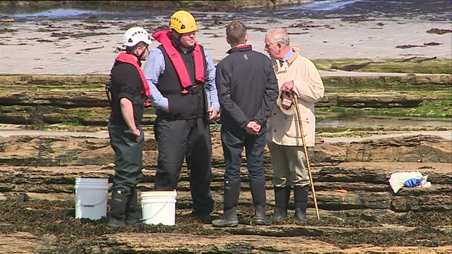 exterior shots prince charles, prince of wales is shown land where new wave foods seaweed harvesting and processing plant source their seaweed from.... - seaweed stock videos & royalty-free footage
