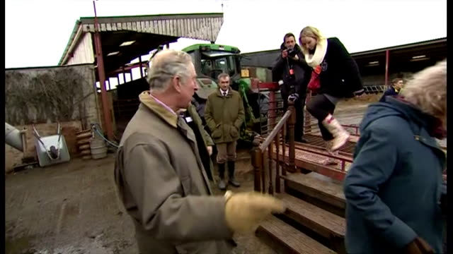 exterior shots prince charles prince of wales stepping off of trailer on farm and talking farm owner and child on in somerset united kingdom - principe carlo principe del galles video stock e b–roll