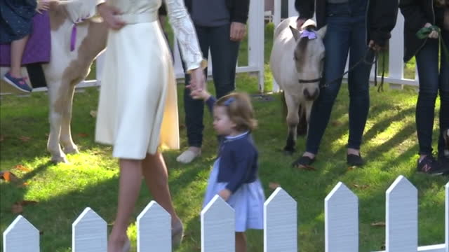 exterior shots prince william, catherine, duke of cambridge, duchess of cambridge, prince george of cambridge and princess charlotte of cambridge... - royal tour stock videos & royalty-free footage