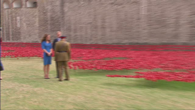 exterior shots prince william / duke of cambridge chatting to general lord dannatt by the thousands of ceramic poppies in the grounds of the tower of... - peerage title stock videos & royalty-free footage