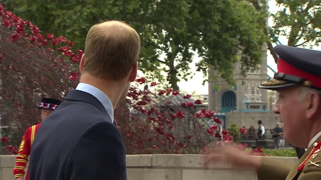exterior shots prince william / duke of cambridge speaking to general lord dannatt outside tower of london about the ww1 centenary poppy display of... - peerage title stock videos & royalty-free footage