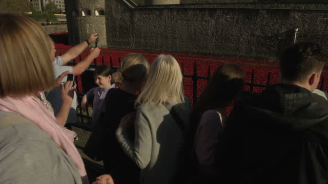 exterior shots sea of heads and crowds vying for a position to see the sea of red poppies completely filling the tower of london moat with tourists... - vallgrav bildbanksvideor och videomaterial från bakom kulisserna