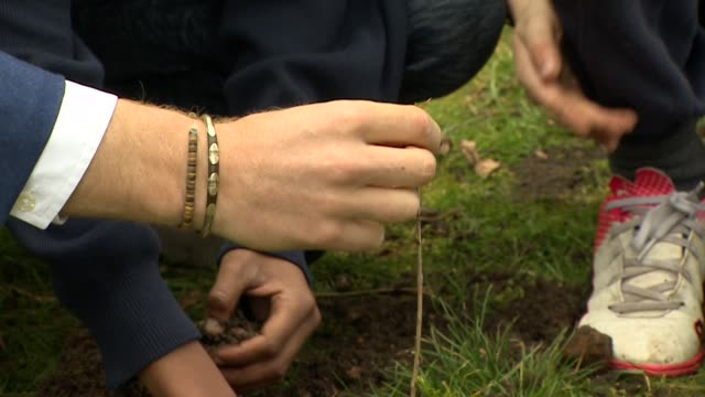 Exterior shots showing Prince Harry Duke of Sussex helping primary school children to plant a tree during his visit to St Vincent's Catholic Primary...