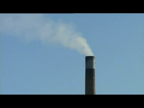 vídeos y material grabado en eventos de stock de exterior shots tilbury power station surrounding greenery with grazing horses exterior shots varius of tilbury power station with smoking chimneys... - un minuto o más