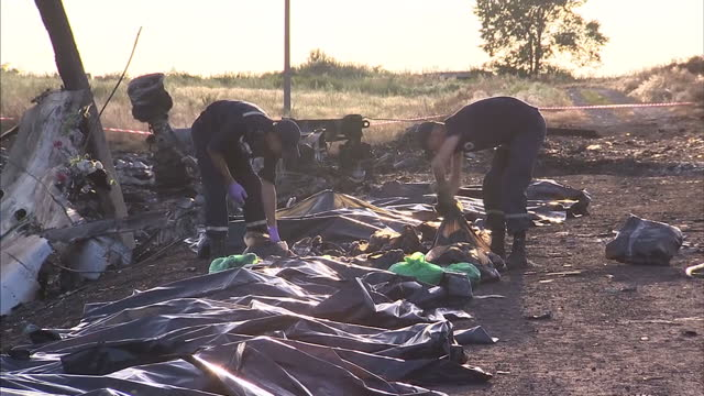 exterior shots ukraine ministry of emergency situations personnel carrying body bags and lining them up in a row at mh17 crash site - bag点の映像素材/bロール
