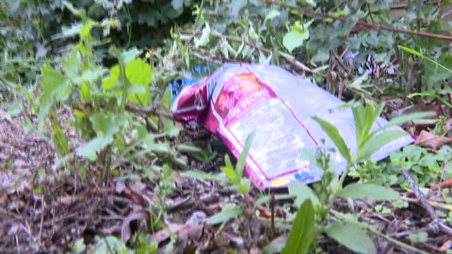 exterior shots various of litter discarded on grass on the side of the road, litter such as empty crisp packets, plastic carrier bag and drinks can... - portionspåse bildbanksvideor och videomaterial från bakom kulisserna
