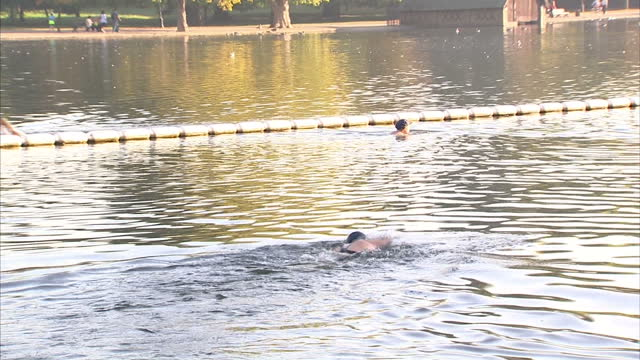 Exterior shots woman swimming in the Serpentine lake Exterior shots people stroll job through Hyde park People Enjoying the Sunshine in Hyde Park on...