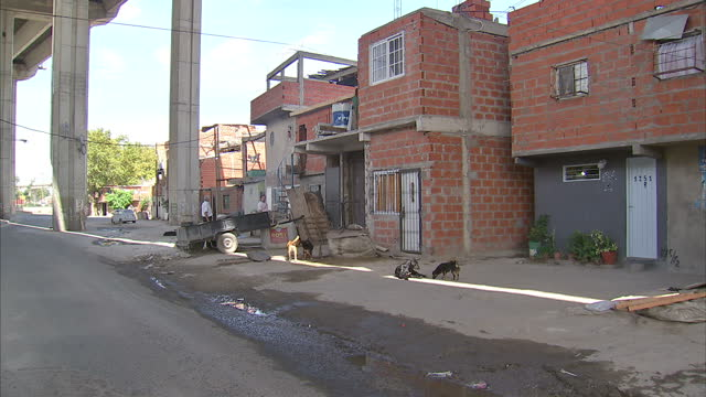 exterior tracking shots driving through poor run down area of buenos aires. exterior shots stray dogs wandering around rundown buildings tracking... - buenos aires stock videos & royalty-free footage