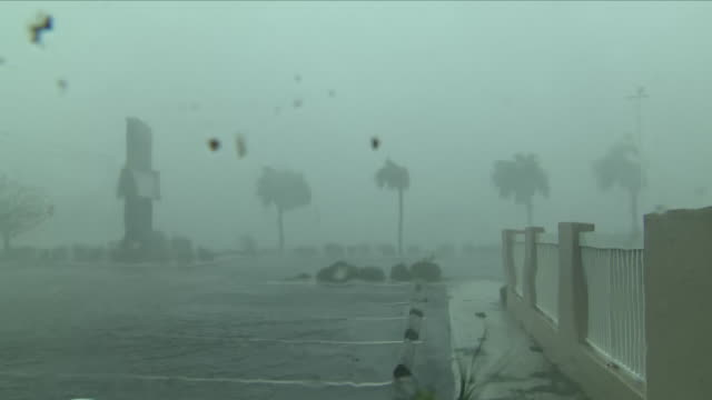 exterior view of a hotel forecourt car park as hurricane michael rages including wind and rain trees and signs swaying on october 10 2018 in panama... - hurricane stock videos and b-roll footage