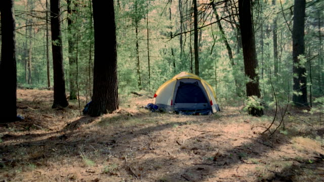 exterior view of tent at campsite shaking because of something moving around inside - tent stock videos & royalty-free footage