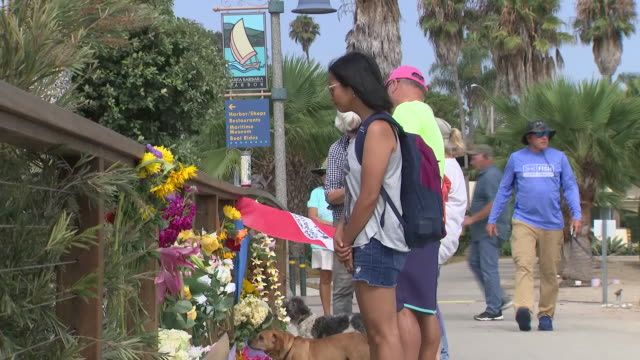 vídeos y material grabado en eventos de stock de exterior views of people leaving flowers and floral tribute at a makeshift shrine to the victims of the santa cruz island boat fire at santa barbara... - santuario