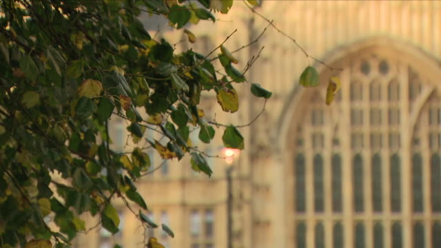 vidéos et rushes de exterior views of the houses of parliament seen on a autumn day including a switched on street light and leaves on the ground with the building in... - parlement britannique