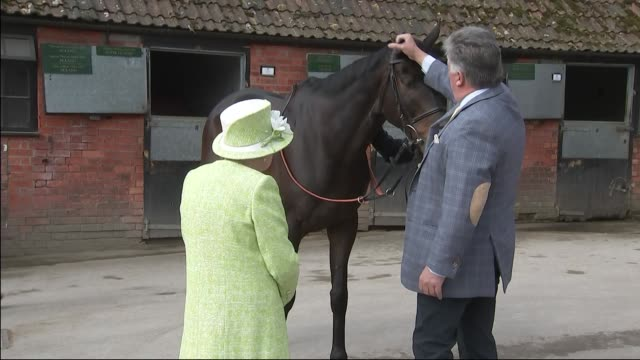exterior views of the queen feeds a carrot to a horse in the stableyard at manor farm on 28 march 2019 in ditcheat, united kingdom - all horse riding stock videos & royalty-free footage
