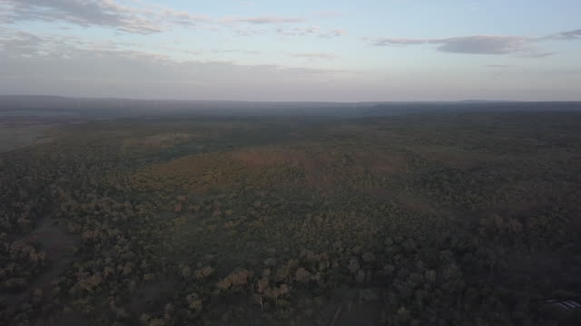 exterior wide rising drone shots overlooking the grasslands in kenya, africa with the horizon in the distance on the 3rd of august 2017. - ebene stock-videos und b-roll-filmmaterial