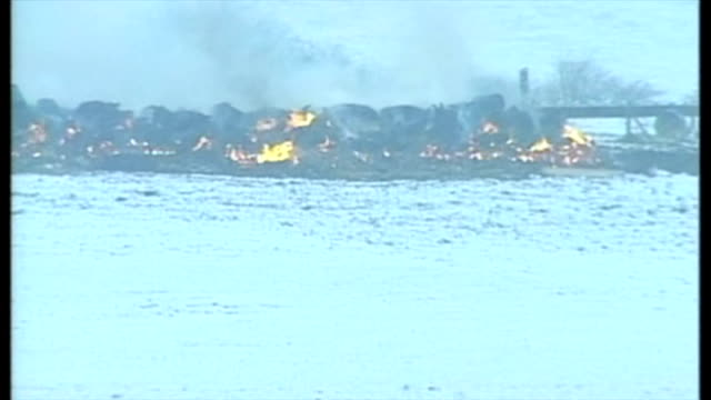 exterior wide shots burning pyre of slaughtered animals in northumbria, snow on grounds on february 26, 2001 in northumberland, england. - animal mouth stock videos & royalty-free footage