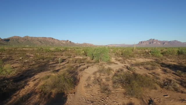 exterior wide shots passing cactus plants with the desert in the background on october 15 2016 in arizona united states - arizona cactus stock videos & royalty-free footage