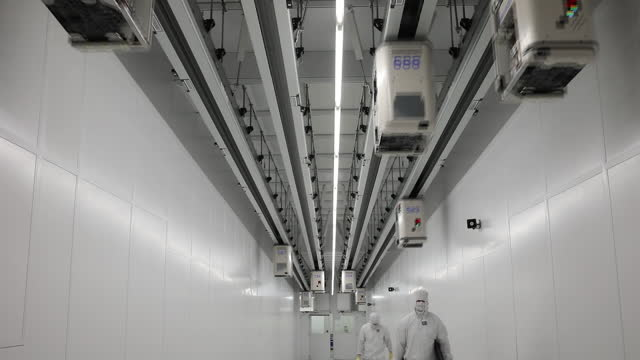 exteriors and interiors of globalfoundries inc. producing semiconductors in dresden. the eu outlined a goal last year to produce at least one-fifth... - 半導体点の映像素材/bロール