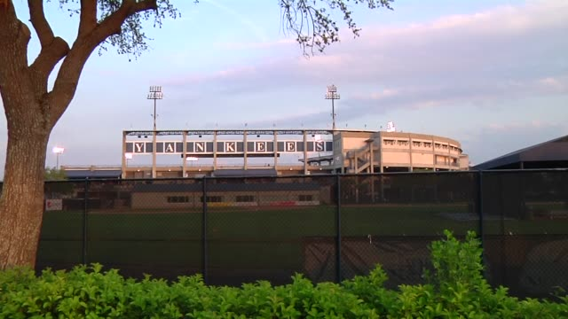exteriors and signage shots of george m steinbrenner field in tampa florida shots of yankees signage on the exteriors of george m steinbrenner field... - spring training stock videos & royalty-free footage