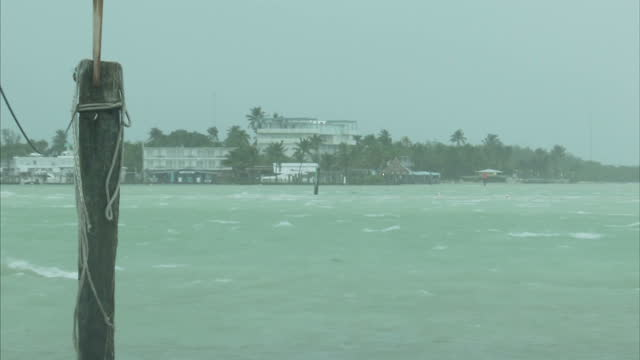 stockvideo's en b-roll-footage met external shots hurricane irma approaching florida keys white topped waves wind blowing across bay under threatening sky bird struggling to fly... - the florida keys