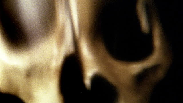 extreme close up anamorphic view of a skull / new york city - anamorphic stock videos & royalty-free footage