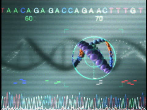 vidéos et rushes de extreme close up crosshairs magnifying dna strands with ekg line below, letters and numbers above - biotechnologie