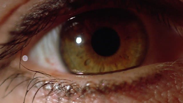 vídeos de stock e filmes b-roll de extreme close up eye opening - olhos castanhos