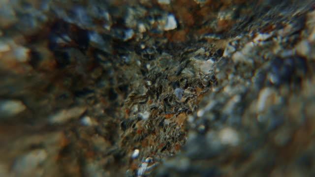 vídeos y material grabado en eventos de stock de extremo acercamiento piedra de granito con espejo de agua - mancha solar