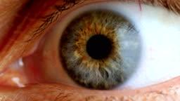 Extreme close up human eye iris