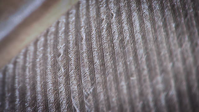 stockvideo's en b-roll-footage met extreme close up of a feather - veer materiaal