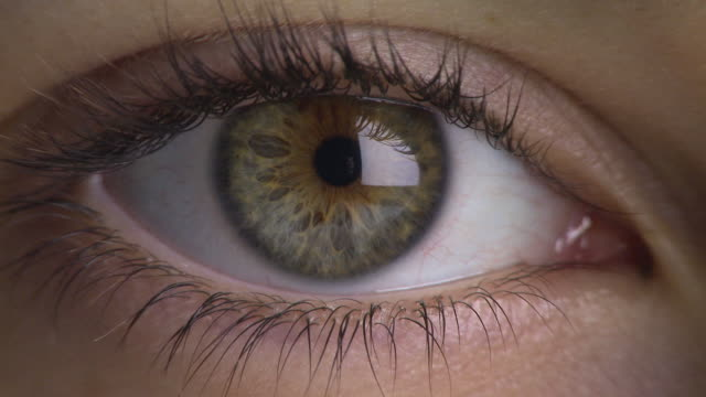 extreme close up of woman's eye - green eyes stock videos and b-roll footage