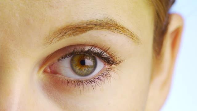 extreme close up of woman's eye - eyelash stock videos & royalty-free footage