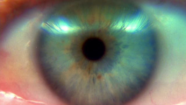 extreme close up rack focus blue eye blinking - eyelid stock videos & royalty-free footage