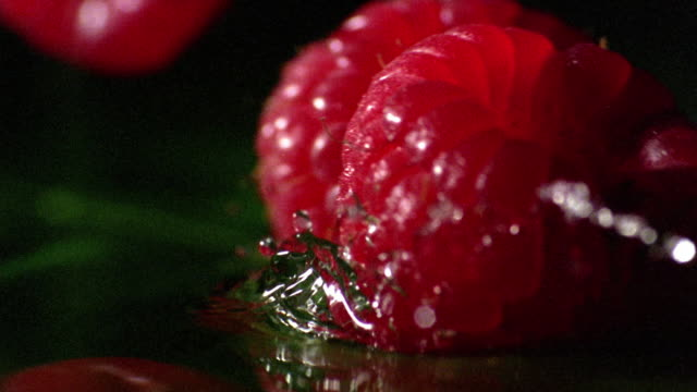 extreme close up raspberries falling in to water - raspberry stock videos & royalty-free footage