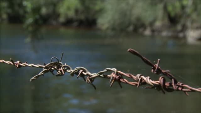 extreme close up rusty barbed wire fence strand with bush land creek behind focus pull and zoom / close up gentle ripples of water in pond focus pull