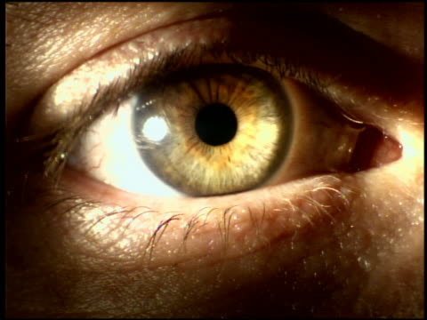 extreme close up slow motion human eye with pupil dilating + expanding