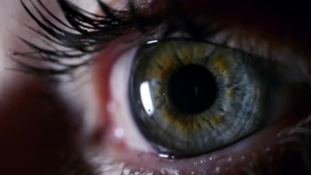 Extreme close-up eye