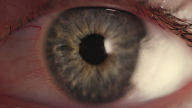 extreme close-up of blue human eye - cornea stock videos & royalty-free footage